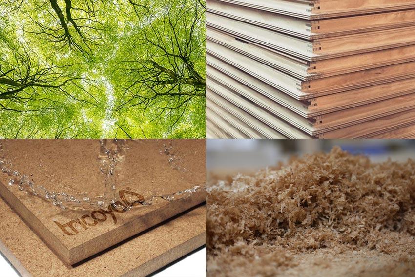 environmentally friendly carpentry